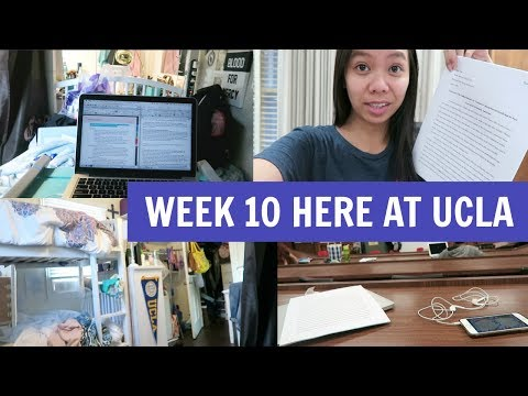 How I Write a 12 Page Essay in One Night! Week 10 at UCLA! #StudentStruggles