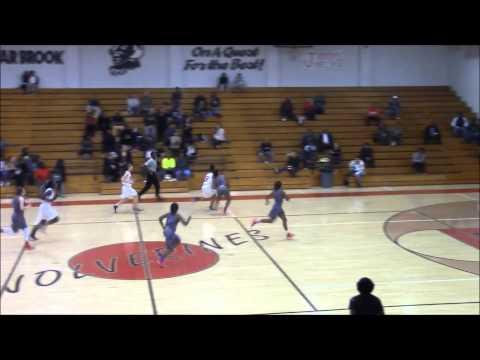 Celeste Basketball Highlights 2014