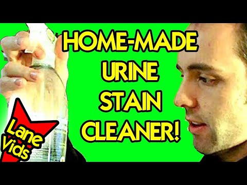 HOW TO NATURALLY GET RID OF URINE STAINS
