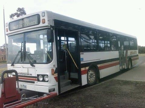 Buses at Geelong