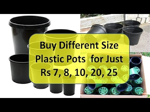 Buy Pots for Just Rs 7, 8, 10, 20, 25 ! Buy Cheap Pots Online
