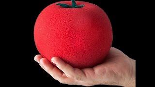 THE INCREDIBLE GROWING SPONGE TOMATO
