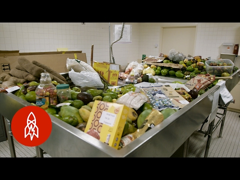 Where Illegal Food Goes to Die