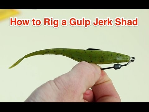 How to Rig a Berkley Gulp Jerk Shad for Catching Snook, Redfish, and Trout