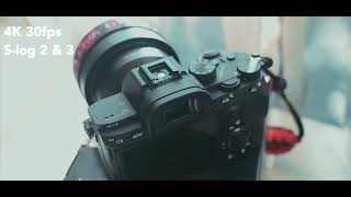 Sony A7iii quick 1 minute product review