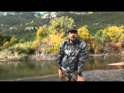 Moose calling tutorial