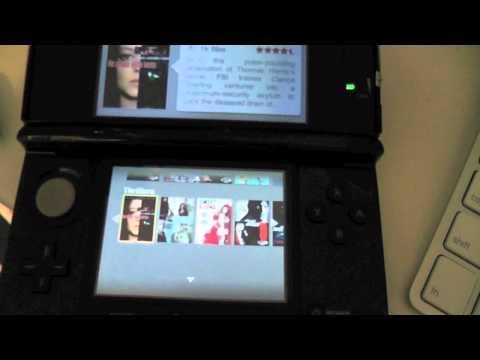 Netflix Nintendo 3DS Review