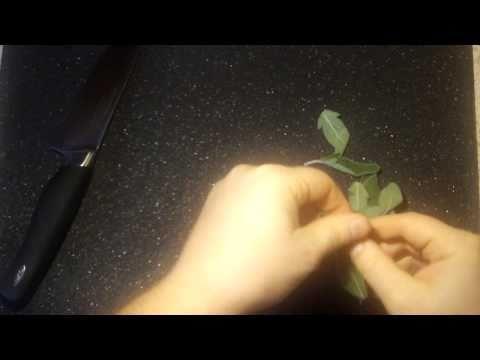 How to Chiffonade Sage