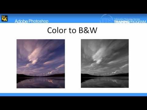 2.16 Converting Photographs to a Black and White Image: Adobe Photoshop CS4 Video