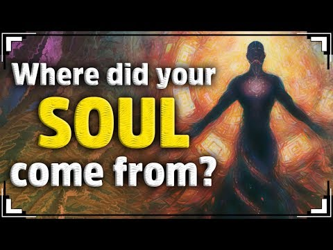 Where Did Your SOUL Come From?
