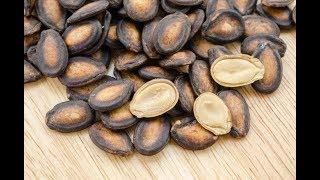 ★ Исключительная польза арбузных семечек.Чай из арбузных семян. Возьми 4 ст. л. свежих растолченных