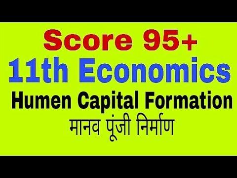 Human Capital Formation Class 11th Economics