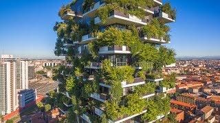 When Trees Meet Buildings | The B1M