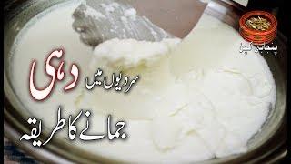 How to make Yogurt in Winter سردیوں میں دہی جمانے کا طریقہ Homemade YOGURT (Punjabi Kitchen)