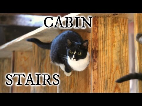 Our timber frame cabin part XXI: PINE SLAB STAIRS