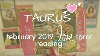 Taurus February soulmate Videos - 9tube tv