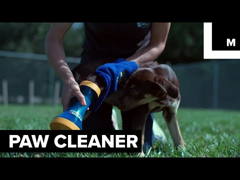 Dog Owners Will Love this Puppy Paw Cleaner