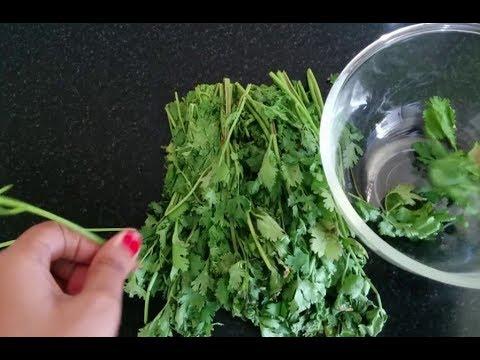 धनिए को 30 दिनों तक रखे ताजा| preserve Coriander for long time |Kitchen tips Cilantro fresh