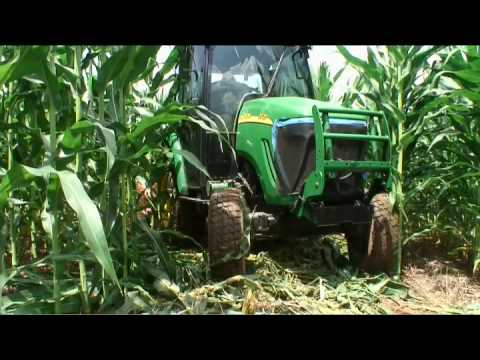 Farmers turn to professionals to cut corn mazes