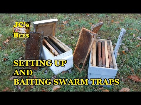 Setting Up And Baiting Swarm Traps / How To Catch Honeybees