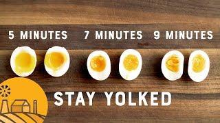 Three Ways to Boil an Egg   Sun Basket