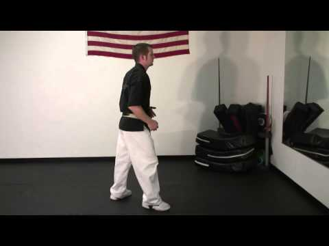 Shotokan Techniques