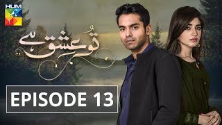 Tu Ishq Hai Episode #13 HUM TV Drama 9 January 2019