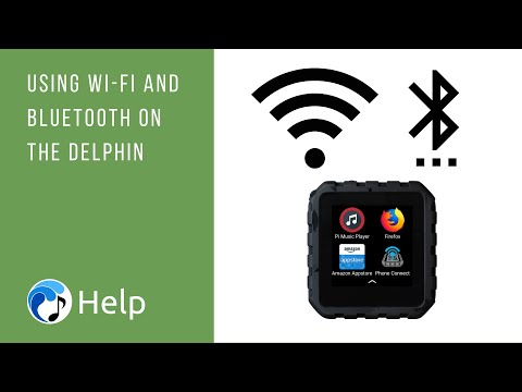Using Wi Fi and Bluetooth on the Delphin
