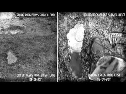 Texas Park Rangers Officially Releases Three Photos Of Bigfoot Footprints
