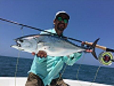 Fly fishing for bonito Flórida