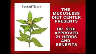 dr sebi herbs list Videos - 9tube tv
