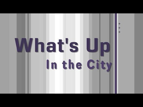 Whats Up In the City   Primary Ballots & Absentee Ballots