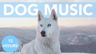 SOOTHING DOG MUSIC for Your Anxious Pup! Calming ASMR Tones!