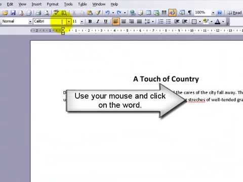 Check Spelling Microsoft Word 2003