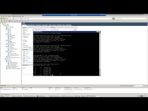 Vmware Raw device mapping linux lvm