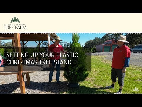 Setting Up Your Plastic Christmas Tree Stand
