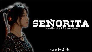 Shawn Mendes, Camila Cabello - Señorita (J. Fla cover)(Lyrics)