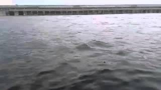 рыбалка в балаково на тэц