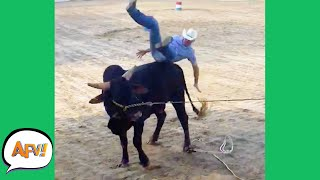 From COWBOY to Cow-OUCH! 😂   Funny Fails   AFV 2021
