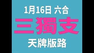 1月16日 六合彩版路 三獨支 超水三版版路 香港六合彩版路號碼預測 【六合彩財神爺】