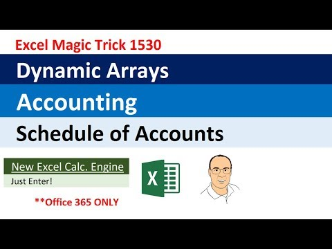 Excel Dynamic Arrays: Accounting: Dynamic Schedule of Accounts (Excel Magic Trick 1530)