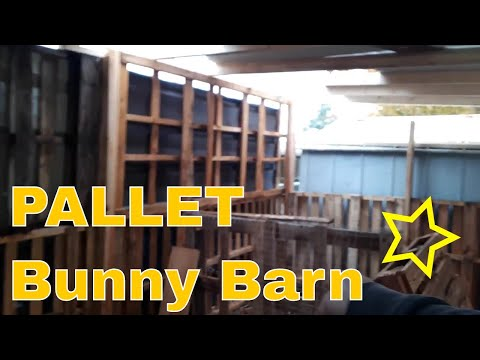 Pallet shed bunny barn
