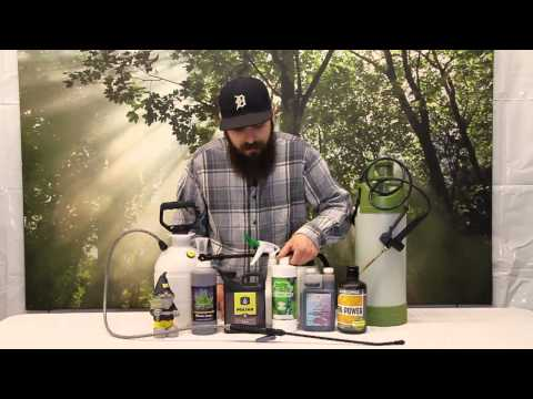 How to Foliar Spray your Plants + Tools you Need
