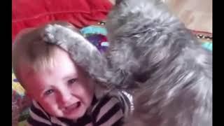 مواقف مضحكة جدا للاطفال 1 - Funny positions for children