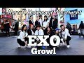 Download  [KPOP IN PUBLIC CHALLENGE TBT] HARMONYC X HARU EXO (엑소)- GROWL (으르렁) DANCE COVER MP3,3GP,MP4