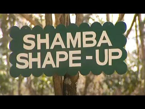 Cow Health Spraying for ticks