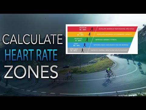 How to Calculate Your Heart Rate Training Zones