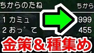 ドラクエ11(ネタバレ注意) 効率的な金策&ドーピング方法(種集め)紹介 ドラゴンクエストⅪ(DQ11)攻略実況プレイその28