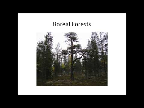 Thomas DeLuca - Managing Soil Carbon in Temperate & Boreal Ecosystems Part 2