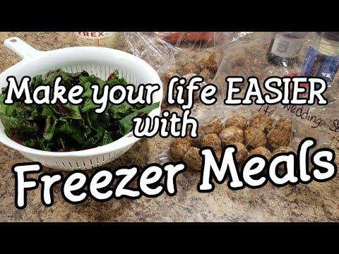 Freezer Meals - Italian Wedding Soup - Ranch Chicken Tacos - Cranberry Pork Roast, BBQ Pork Loin